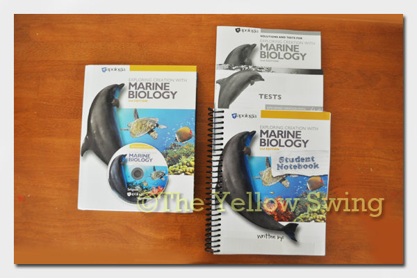 apologia_marine_biology0698