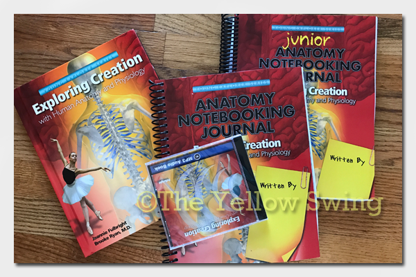 Apologia: Exploring Creation with Human Anatomy and Physiology {review}